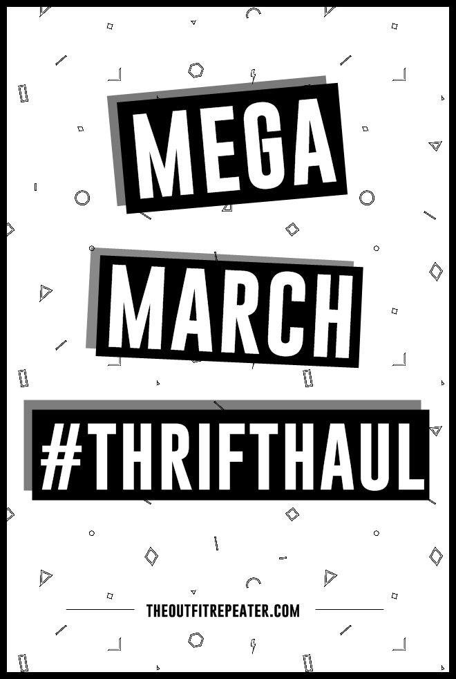 Mega March 2015 Thrift Haul Video