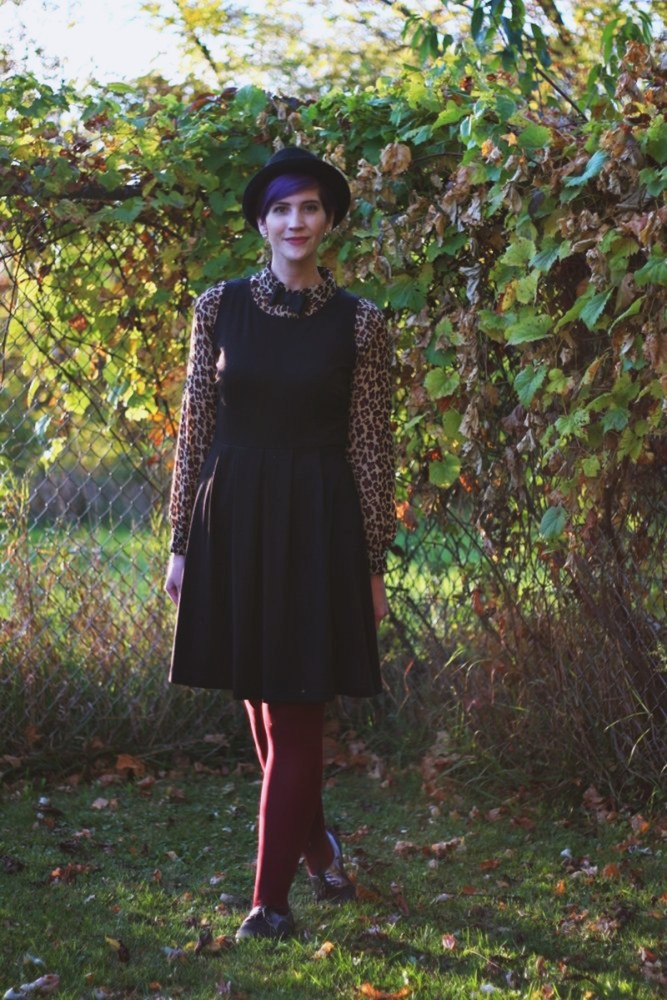 Outfit: leopard print blouse, black dress, burgundy tights, brogues, pork pie hat