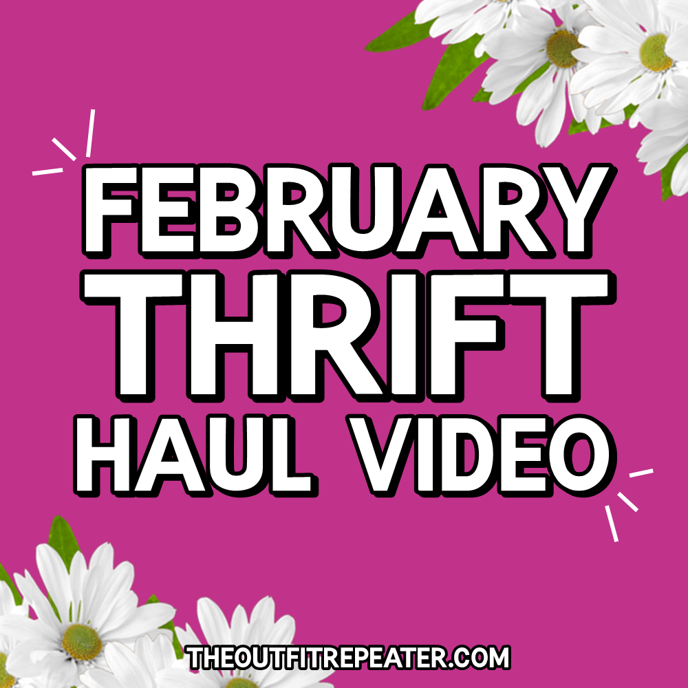 February Monthly Thrift Haul Video