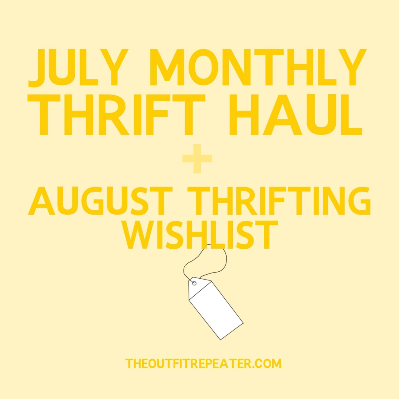July Thrift Haul Video + August Thrifting Wishlist