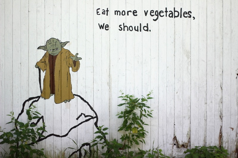 yoda wall mural painting eat more vegetables we should garden star wars force