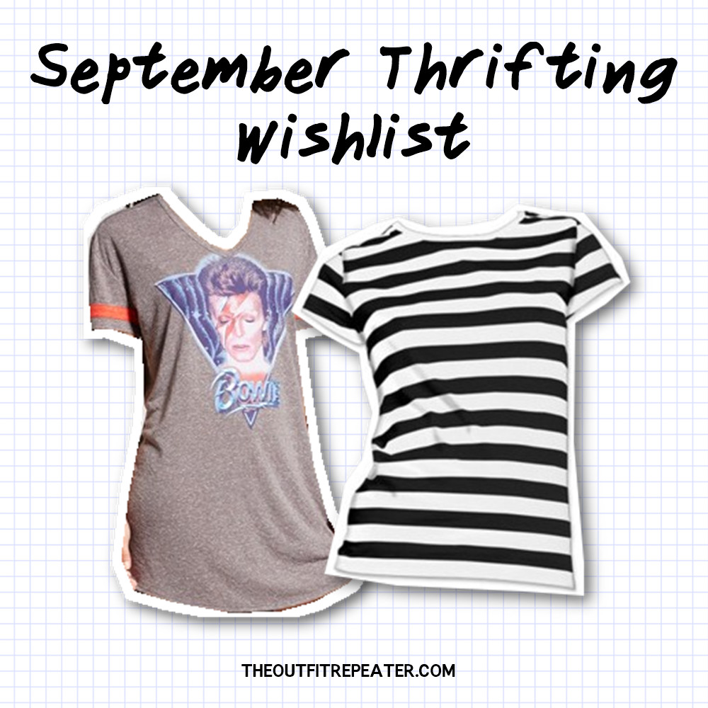 September thrifting wishlist