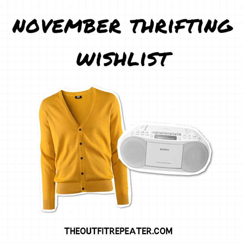 Chatty October Thrift Haul Video + November Thrifting Wishlist