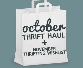 Chatty October Thrift Haul Video + November Thrifting Wishlist