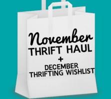 A Stylish November Thrift Haul + December Thrifting Wishlist